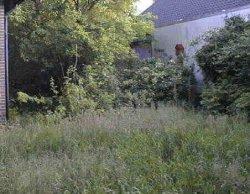Garten_hinten1.jpg